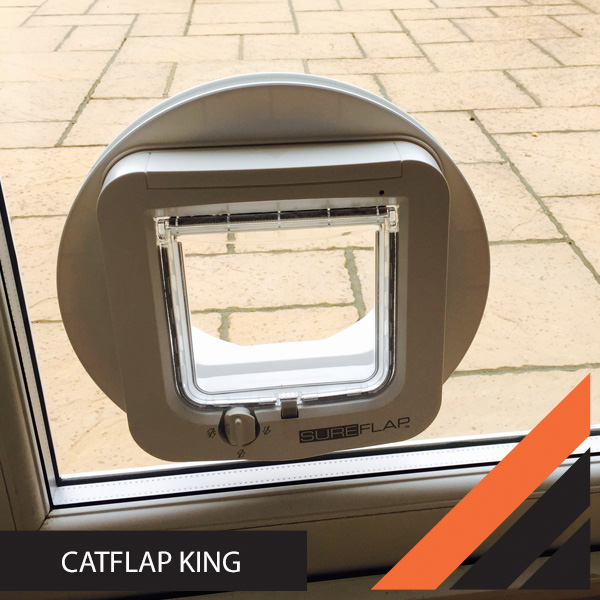 btn_cat-flap-king